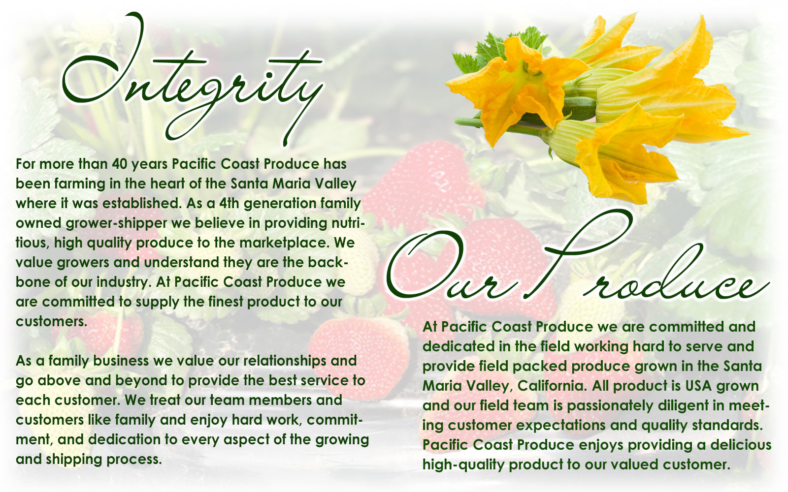 For more than 40 years Pacific Coast Produce has been farming in the heart of the Santa Maria Valley where it was established. As a 4th generation family owned grower-shipper we believe in providing nutritious, high quality produce to the marketplace. We value growers and understand they are the backbone of our industry. At Pacific Coast Produce we are committed to supply the finest product to our customers. As a family business we value our relationships and go above and beyond to provide the best service to each customer. We treat our team members and customers like family and enjoy hard work, commitment, and dedication to every aspect of the growing and shipping process.